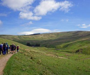 Walkers enjoying a guided walk in Northumberland National Park