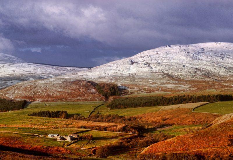 Alnhammoor in the Cheviot Hills