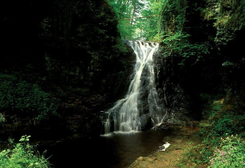 Hareshaw Linn waterfall in the Northumberland National Park