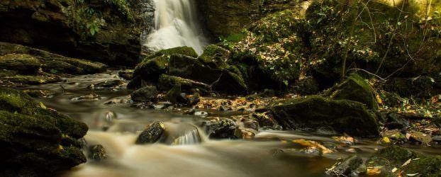 the stream at Hareshaw Linn