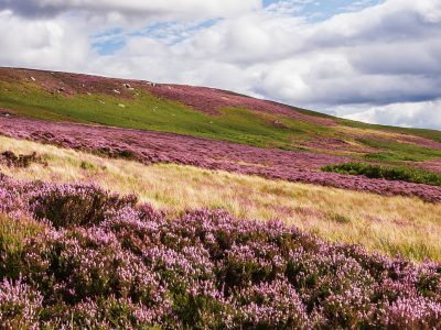 Padon Hill in Redesdale in the Northumberland National Park