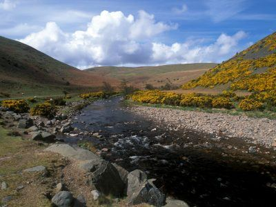 a photo of the River Breamish