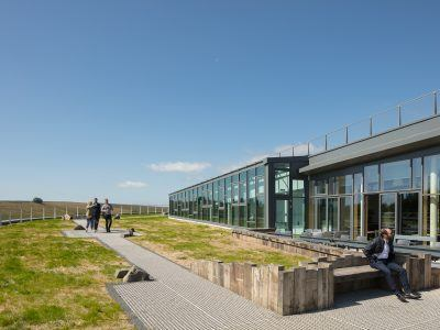 The green roof of The Sill