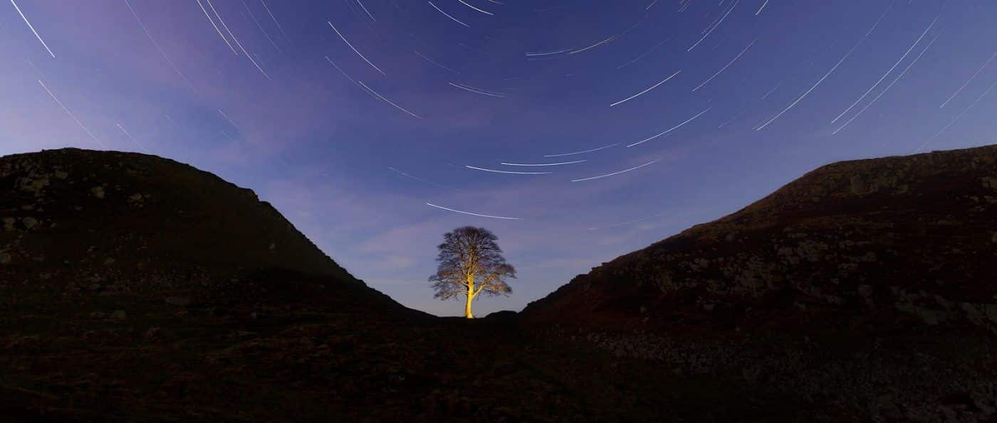 Sycamore Gap at night, the sky above it is full of circular star trails.