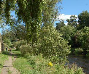 Rothbury Riverside