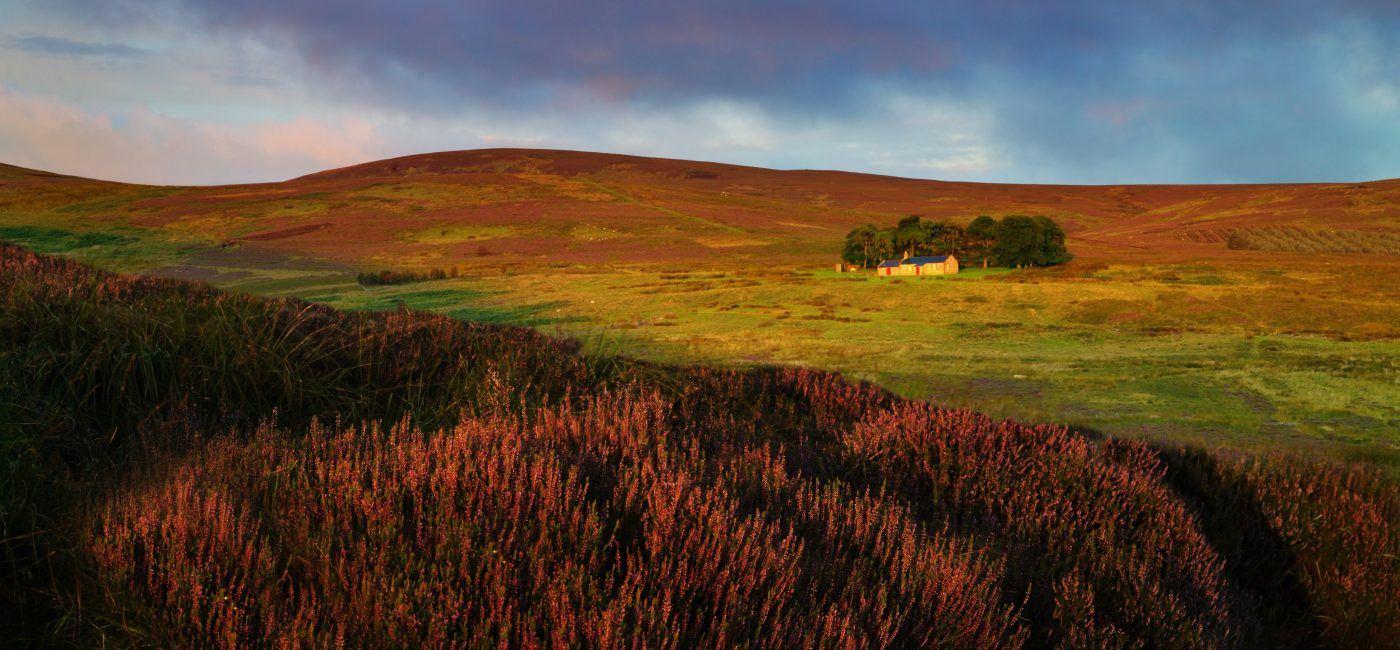 New Broadstruthers landscape photo