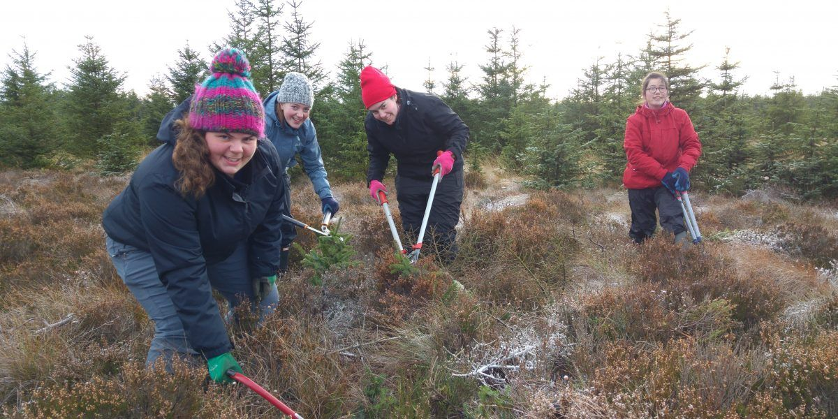 Leeds University Conservation Volunteers working in the National Park