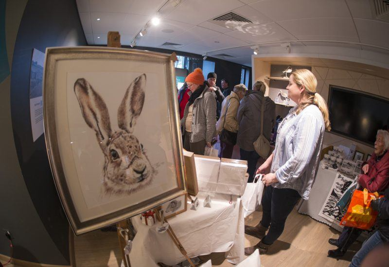A painting of a hare on display at The Sill