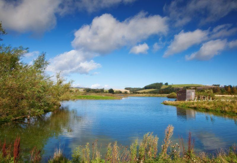 Branton Nature conservation area