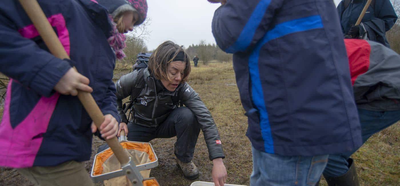 Ranger Sally Graham pond dipping with children