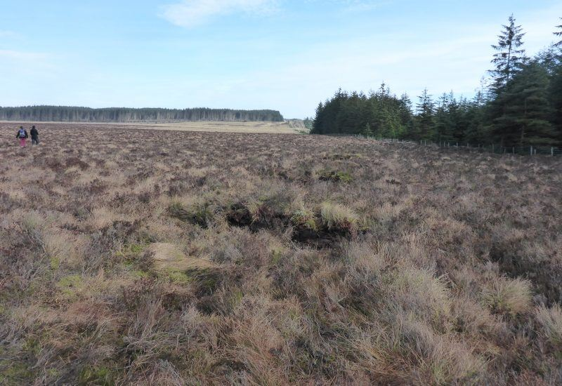 after work was completed on steng moss peat bog in 2019