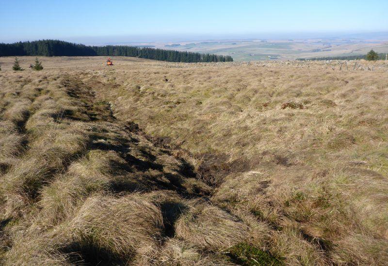 A landscape photo showing a peat bog at steng moss.