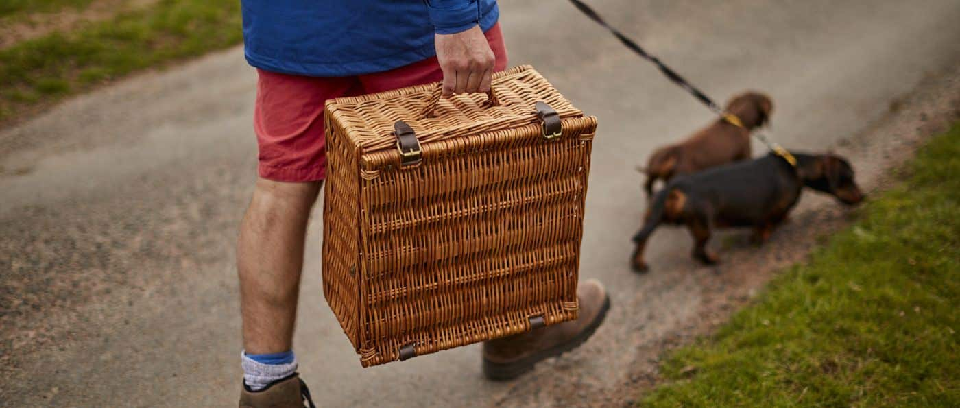 Man carries a picnic basket while walking two small dogs
