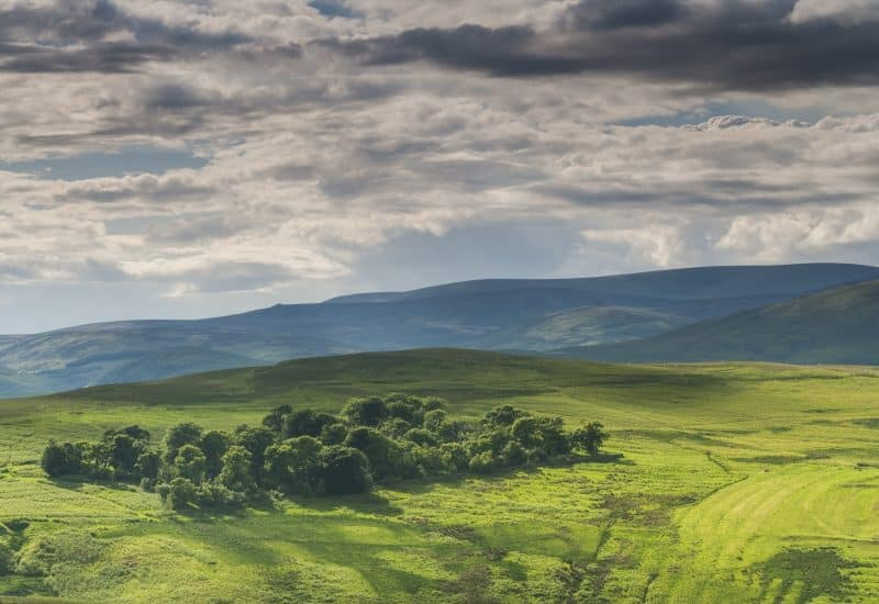 Dramatic light caused by an incoming rain cloud over the Northumberland National Park in the Ingram Valley, England