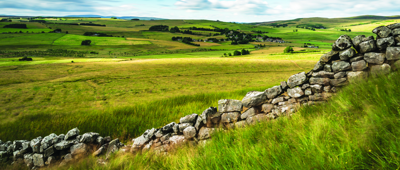 The view from Gallow Hill near Elsdon