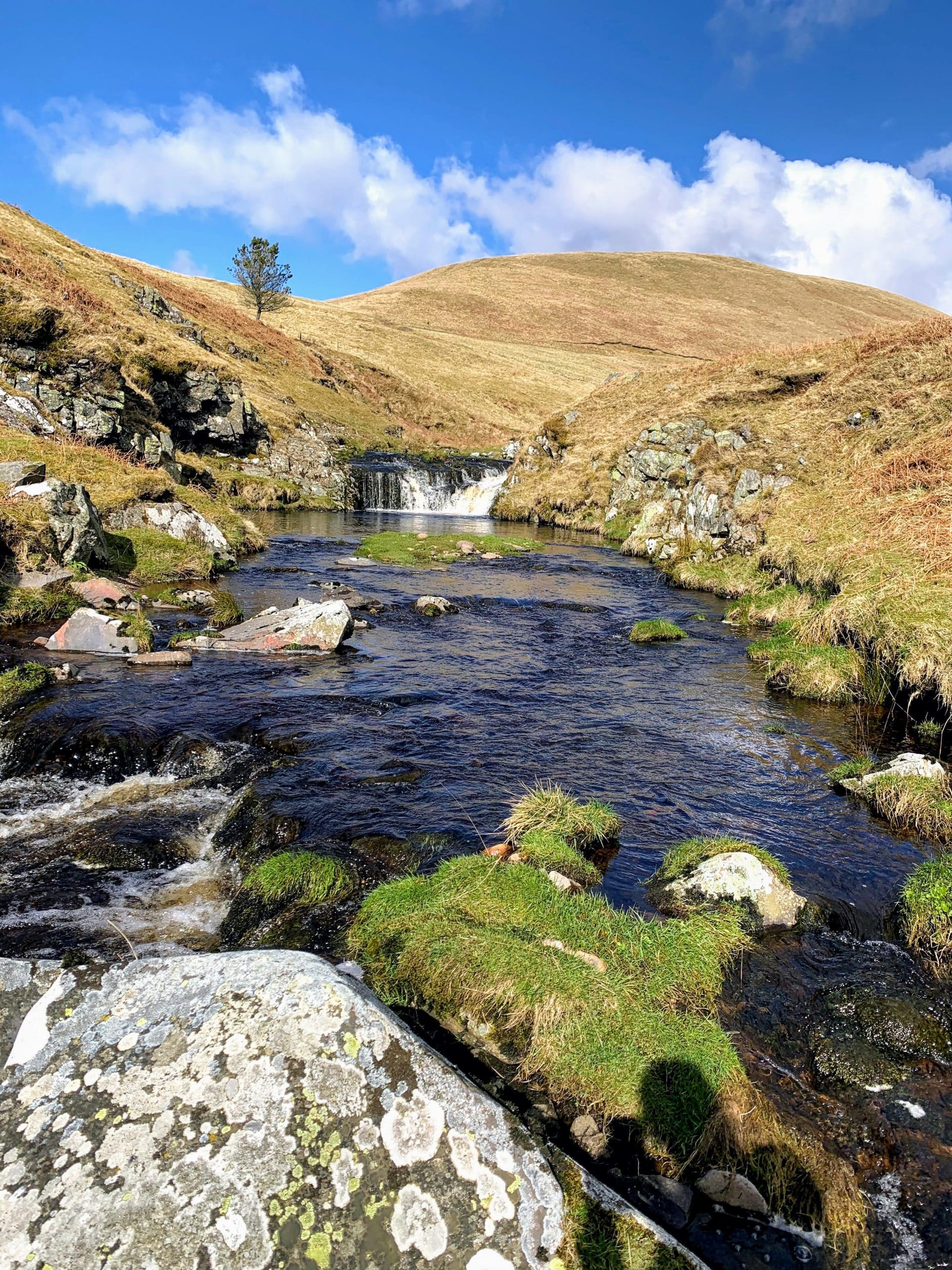 A small waterfall feeding into a Northumbrian river.
