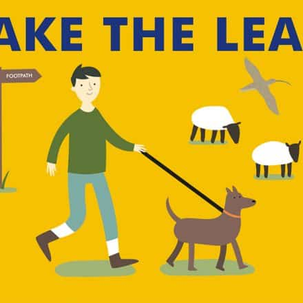 """A cartoon illustration of a dog walker, walking with a dog on a lead close to two sheep. Text above reads """"Take The Lead"""""""