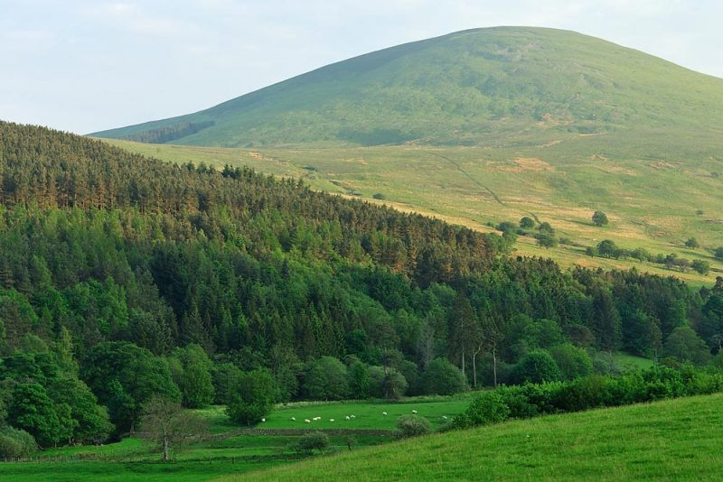 A Cheviot hill rises over the green Harthope Valley.